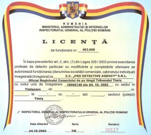 PRO DETECTIVE Licenta